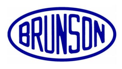 Logo Brunson :::Microservice